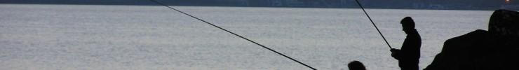 Interpellation sur les nouveautés relatives au permis de pêche en Wallonie